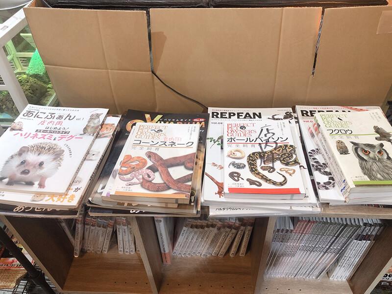 爬虫類に関する書籍が販売されているコーナー